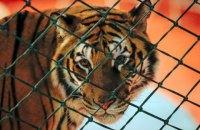 Черкаська міськрада заборонила пересувні звіринці та цирки