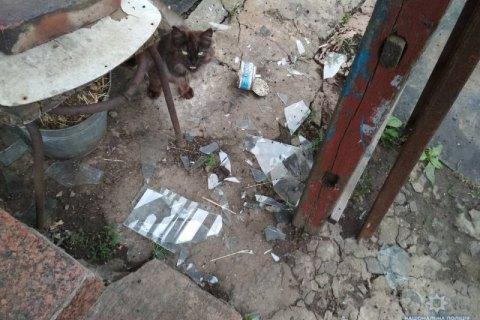 Дитбудинок і житлові будинки в Торецьку потрапили під обстріл (оновлено)