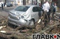 У Києві вітер зриває дахи і валить дерева та білборди