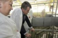 Ющенко и его «молдаване»