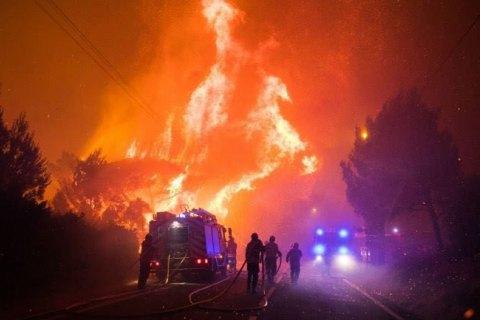 Масштабна лісова пожежа почалася у Португалії