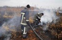 В Черниговской области загорелось более 18 га торфяников