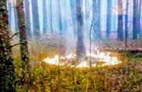 Аваков: у Чорнобильській зоні припинили спробу нового підпалу