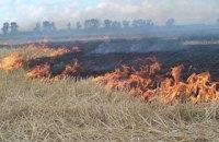 Пожежа знищила понад 100 га пшениці в Харківській області