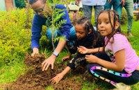В Ефіопії за 12 годин висадили 350 млн дерев