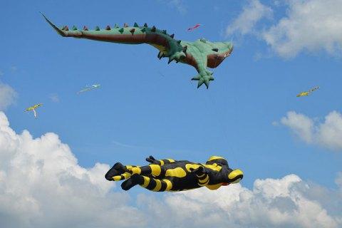 Біля Миколаєва пройшов фестиваль повітряних зміїв