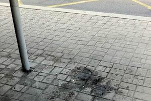 У Донецьку через Януковича прибрали смітники
