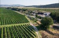 Україна відстежуватиме факти незаконної реалізації кримського вина за кордоном