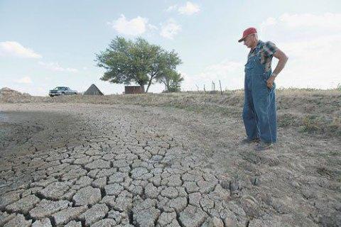 В Одеській області фермери погрожують перекрити дороги, якщо держава не компенсує збитки в зв'язку з посухою