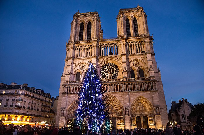 Рождественская елка перед собором Нотр-Дам в Париже, Франция.