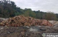 У Київській області ветсанзавод влаштував нелегальний скотомогильник