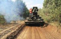 В МВД отчитались о ликвидации пожара на территории одного из лесничеств в зоне отчуждения