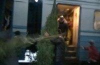 ЛЖД пригрозила отменить электрички из-за торговцев елками