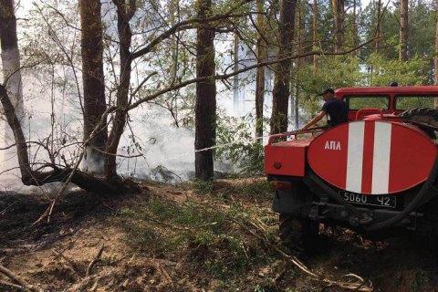 В Херсонской области горело пять гектаров леса