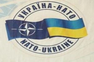 Янукович только сейчас одобрил работу Украины с НАТО на 2012 год
