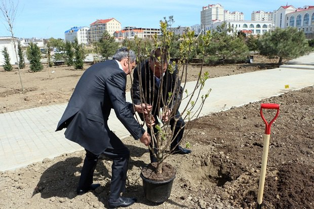 Сергей Меняйло (слева) и Павел Лебедев (за деревом) сажают деревья в парке Победы в мае 2015 года. Вскоре компании Лебедева получат два участка в этом парке под застройку.