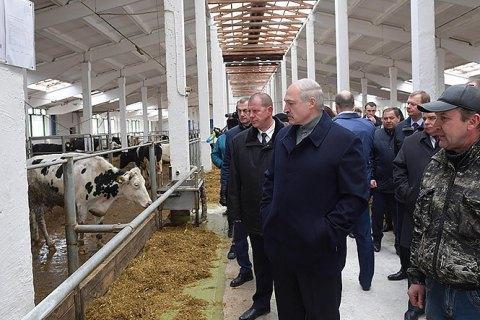 """Лукашенко звільнив губернатора Могильовської області через """"обісраних"""" корів"""
