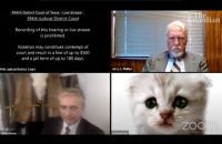 Американський прокурор не вимкнув фільтр в Zoom і включився в судове засідання під виглядом кота