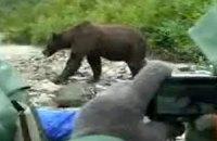 Туристы в заповеднике на Аляске проигнорировали бегущего медведя