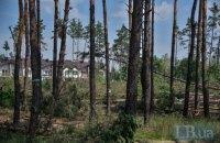 Рада поддержала ужесточение наказания за незаконную вырубку деревьев в городах, - Горенюк