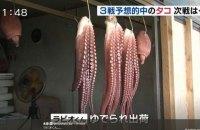 В Японии съели осьминога, верно предсказавшего все исходы матчей сборной на ЧМ-2018
