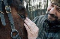 «Ветерани не хворі, вони нормальні. Просто бачили більше, ніж інші». Як у Львові організували кінні заняття для учасників війни