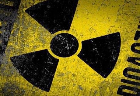 В эстонском лесу нашли контейнер с ураном