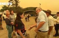 Жителі постраждалого від пожеж села облаяли прем'єр-міністра Австралії