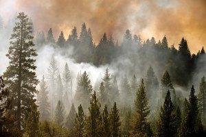 Бороться с пожарами в Калифорнии помогут военные беспилотники