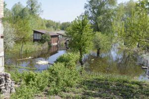 В Черкасской области из-за сброса воды Каневской ГЭС подтоплены дома