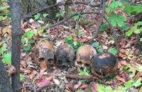 Поліція Миколаєва розшукала чоловіка, який розносив по місту людські черепи