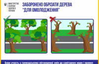 Минздрав предлагает запретить обрезку деревьев, сжигание листьев и посыпание дорог солью