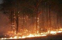 В Крыму горит Ялтинский заповедник