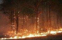 В Іспанії евакуювали 1,7 тис. осіб через лісову пожежу