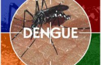 На Шрі-Ланці за півроку від лихоманки денге померли 296 осіб