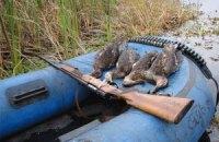 Депутаты хотят узаконить охоту в заповедниках