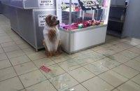 Неизвестные с автоматами ограбили ювелирный магазин в Николаеве
