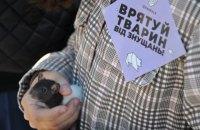 Марш за права тварин пройшов у Києві та Львові