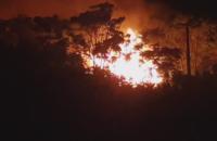 В Одессе возник пожар в детском лагере