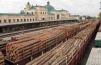 Эксперты перечислили условия для отмены моратория на экспорт украинской древесины