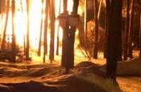 На Київщині сталася пожежа у будинку ексдепутата Ігоря Калетника