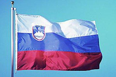 В Словении проходит второй тур президентских выборов