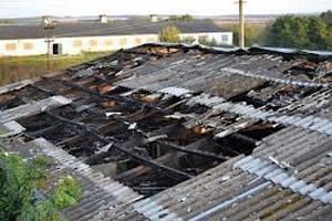 Під Житомиром спалили ферму довіреної особи депутата
