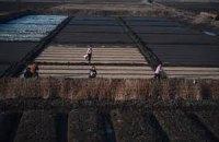 Экономика КНДР выросла второй раз за шесть лет