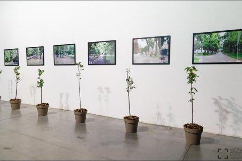 Зеленский поздравил украинских художников с профессиональным праздником