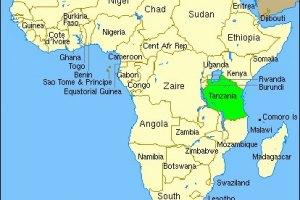 Количество жертв крушения парома в Танзании превысило 200 человек