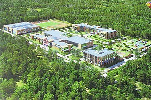 В Конча-Заспе вырубили 9 гектаров леса под элитную школу