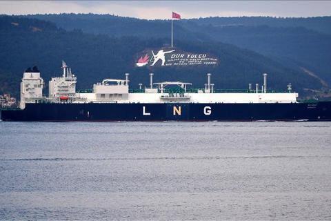 Україна зацікавилась перспективами імпорту зрідженого газу з Туреччини