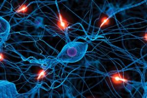 Учені запропонували новий метод лікування епілепсії