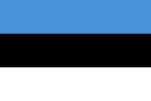 """В Эстонии приняли закон об """"электронном гражданстве"""" для иностранцев"""
